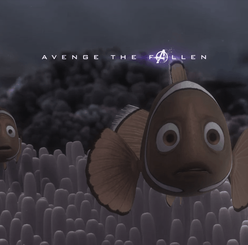 Coral from Nemo Avenge the Fallen Memes
