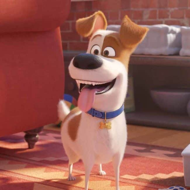 parent oswalt is in secret life of pets 2 one of the 2019 june movie releases