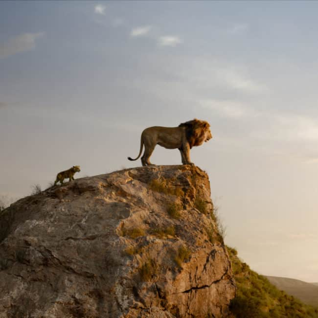 The Lion King parent movie review
