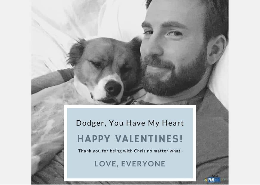 Valentines day cards Chris Evans and Dodger