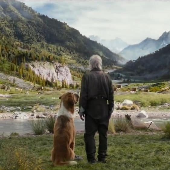 Is call of the wild safe for kids to watch? Buck the dog and John Thornton look at Alaska wilderness mountains