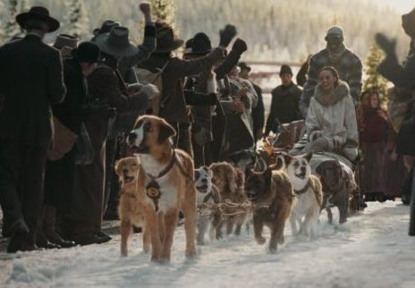 when can you peed during the call of the wild? after the sled dogs arrive in town