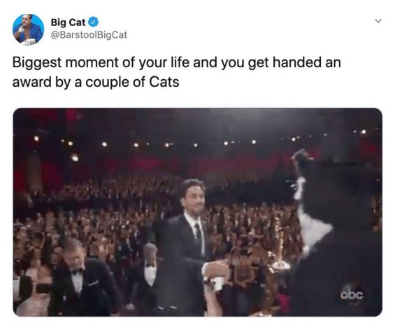 cats oscars 2020 memes