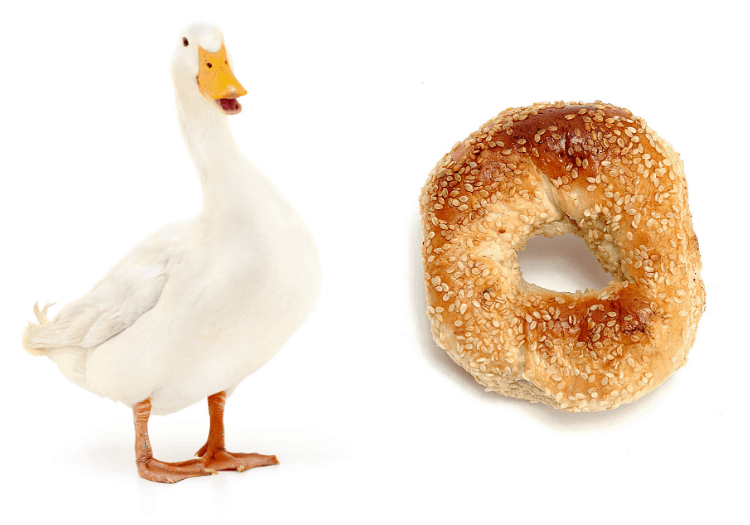 no context spoilers sonic duck and bagel