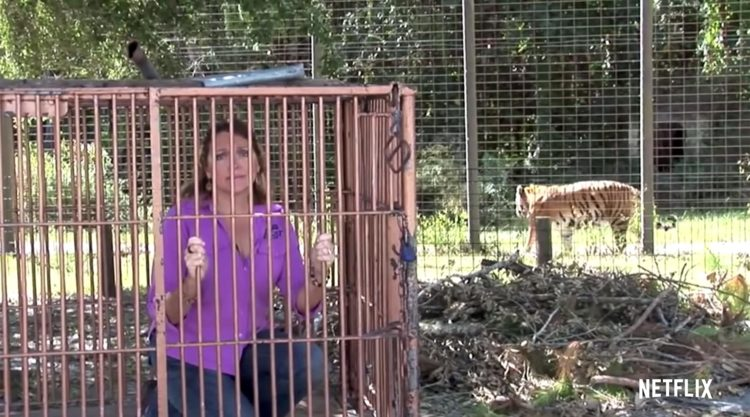 carole baskin in cage tiger king quotes