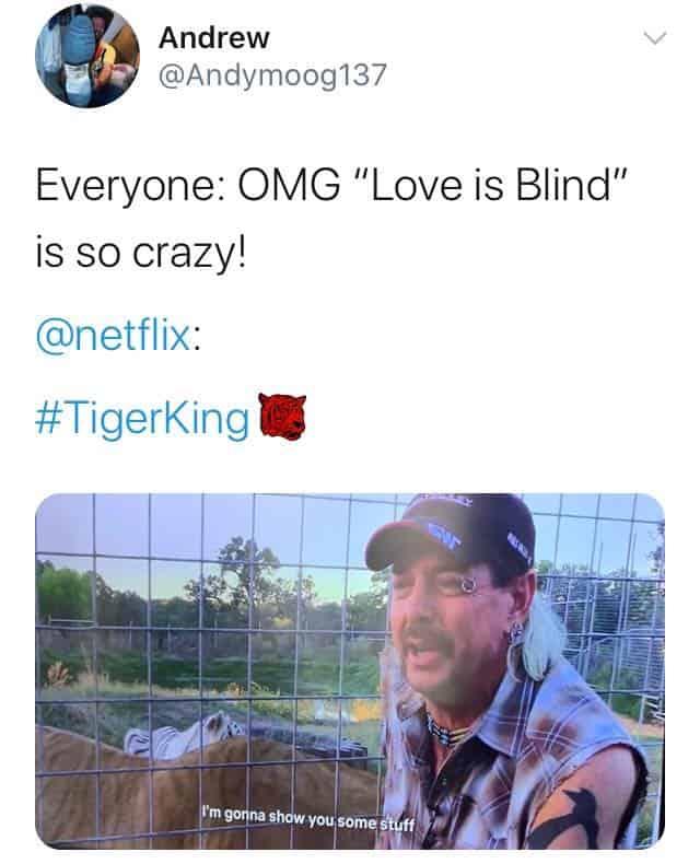 Love is Blind Netflix Tiger King Memes