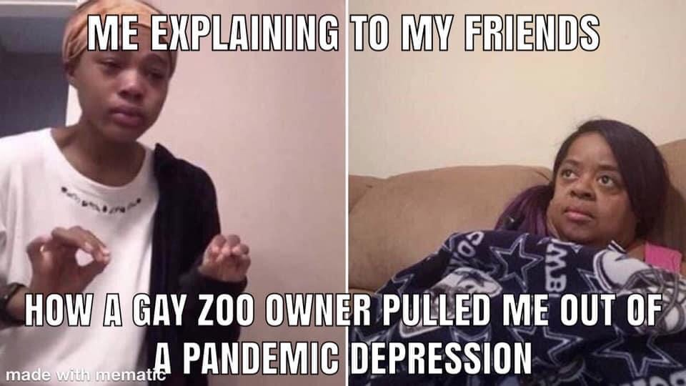 tiger king meme cure for depression